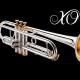 XO Specials Blechblasinstrumente - Sondermodelle, Einzelstücke. XO1604RGR3