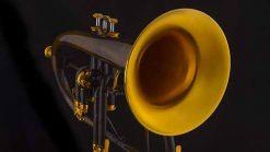 Beck Meisterinstrumente